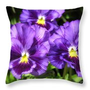 Pansy From The Chalon Supreme Primed Mix Throw Pillow