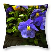 Pansy Planter Throw Pillow
