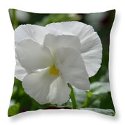 Pansy Purity Throw Pillow