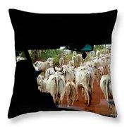Pantenal Cows Throw Pillow