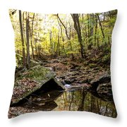 Panther Branch In Fall Throw Pillow