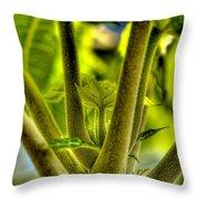 Papaya Shoot Throw Pillow