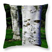 Paper Birch Trees Throw Pillow