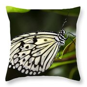 Paper Kite Butterfly On A Leaf  Throw Pillow