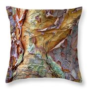 Paperbark Abstract Throw Pillow