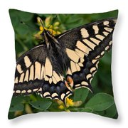 Papilio Machaon Butterfly Sitting On The Lucerne Plant Throw Pillow