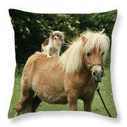Papillon Riding Shetland Pony Throw Pillow