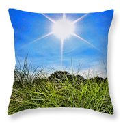 Papyrus In The Sun Throw Pillow