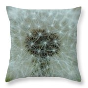 Parachutes Throw Pillow