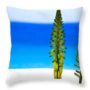 Paradise.... Throw Pillow