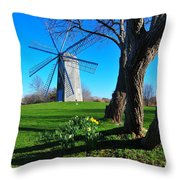 Paradise Park Windmill Throw Pillow