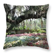 Paradise Perceived Throw Pillow
