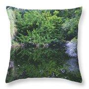 Paradise Pond Throw Pillow