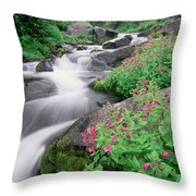 Paradise River And Spring Wildflowers Throw Pillow