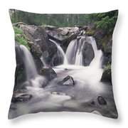 Paradise River Cascade Mt Rainier Throw Pillow