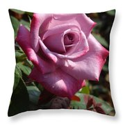Paradise Rose  Throw Pillow