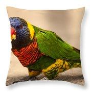 Parakeet With Treat Throw Pillow