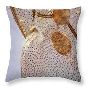 Parasitic Mites 501 Throw Pillow