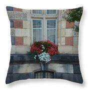 French Stone Throw Pillow