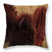 Parent With Newborn Calf Bison Throw Pillow