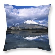 Parincota Lauca National Park Andes Throw Pillow