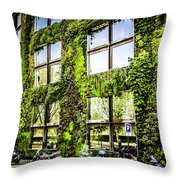 Paris Moss Throw Pillow