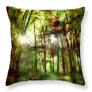 Park Art V Throw Pillow