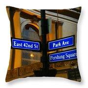 Park Avenue Throw Pillow