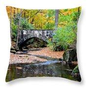 Park Bridge Throw Pillow