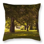 Park By The Rivers Throw Pillow