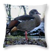 Park Ducks Throw Pillow