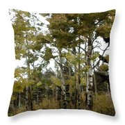Park It There Throw Pillow