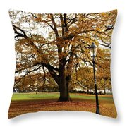 Park Life Throw Pillow