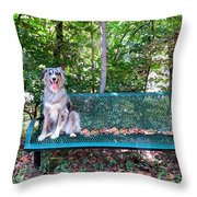 Park Pal Throw Pillow