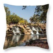 Park Reflections Throw Pillow