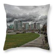Park View Throw Pillow
