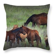 Parker Ranch Horses Throw Pillow