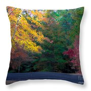 Parking Respit Throw Pillow
