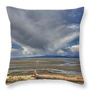 Parksville Beach - Low Tide Throw Pillow