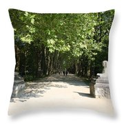 Parkway Chateau Chenonceaux  France Throw Pillow