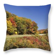 Parkway Road In North Carolina Throw Pillow