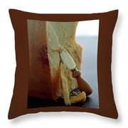 Parmigiano-reggiano Cheese Throw Pillow