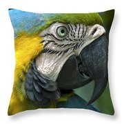 Parrot 9 Throw Pillow
