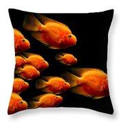 Parrot Fish Throw Pillow