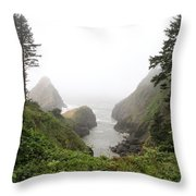 Parrot Rock In The Fog Throw Pillow