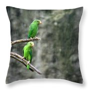 Parrots In The Rain Throw Pillow