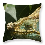 Parsons Chameleon From Madagascar 12 Throw Pillow