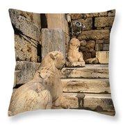 Parthenon 6 Throw Pillow