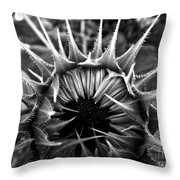 Partial Eclipse Of The Sunflower - Bw Throw Pillow