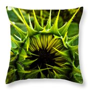 Partial Eclipse Of The Sunflower Throw Pillow